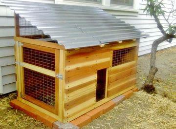 Chicken coop los angeles urban chicken enthusiasts los for Duck hutch ideas