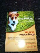 Best Dog Walks Near Haywards Heath