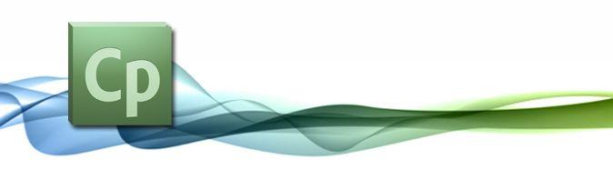 Adobe eLearning User Group - Carolinas
