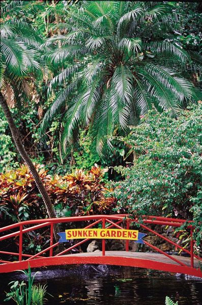 Model shoot sunken gardens st petersburg fl tampa Sunken gardens st petersburg florida