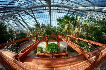 Indoor Macro Shoot Matthaei Botanical Gardens Michigan
