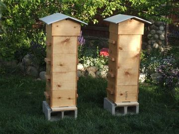 Warre Bee Hive Plans