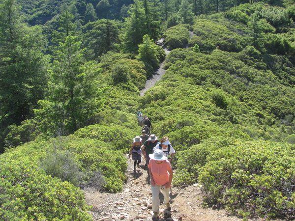 single men in trabuco canyon Sober living homes for single men,  , trabuco canyon, 92678, san dimas, 91773, wildomar, 92595, wrightwood, 92397, orange, 92869, trabuco canyon, 92679, irvine.