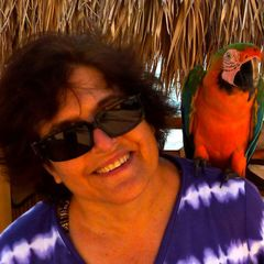 delray beach single lesbian women I am a very youthful 64, single lesbian woman and must continue  i have been  drawn to delray beach in my head for a year, although i'm not.