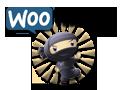 WooThemes - WordPress Themes & Plugins