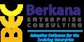 Berkana Enterprise Consulting, LLC